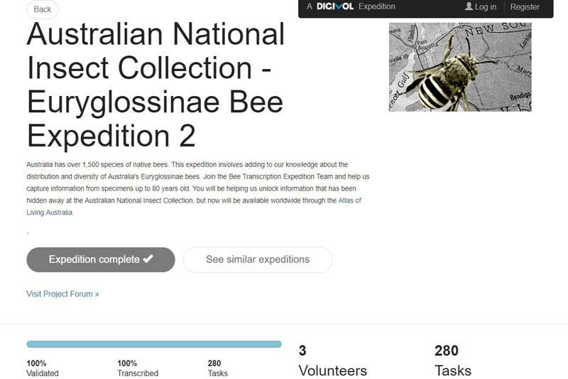 Citizen scientists helping CSIRO digitise Australian bee collection through online volunteering portal